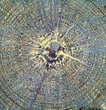 Spin Art 41